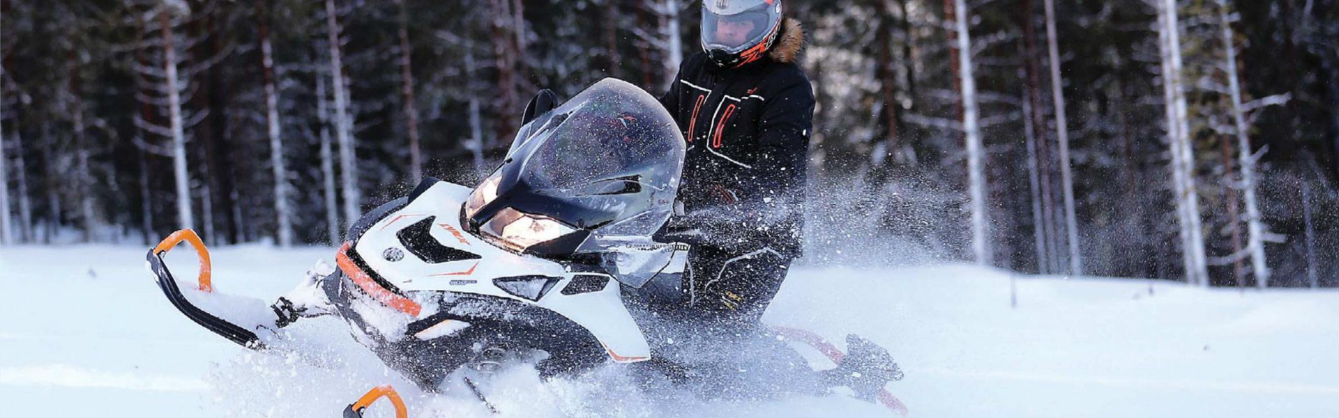 on-Snow_Lynx